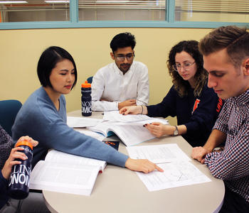 uiuc econ supporting coursework